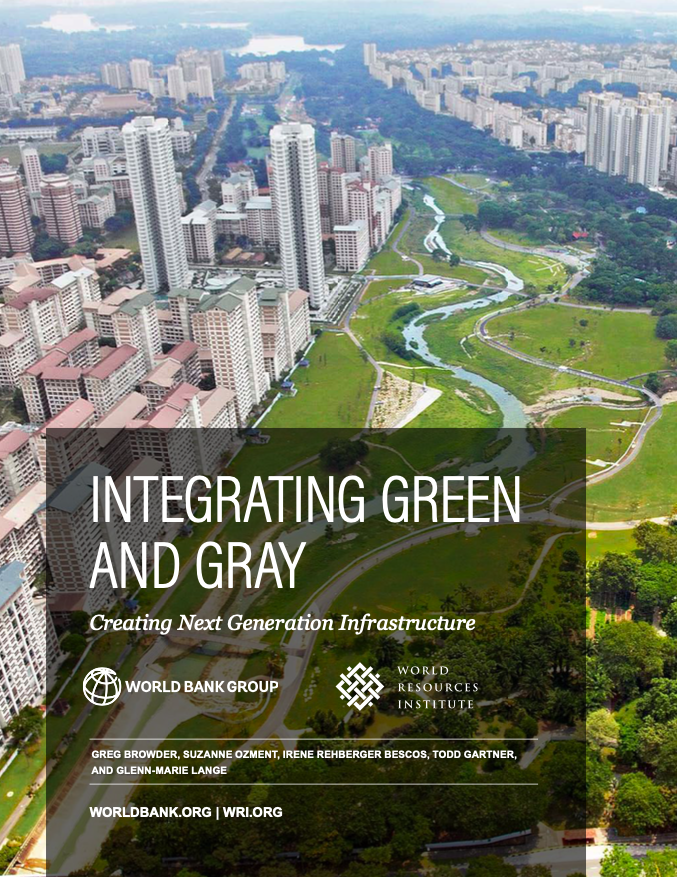 Integrating Green and Gray : Creating Next Generation Infrastructure