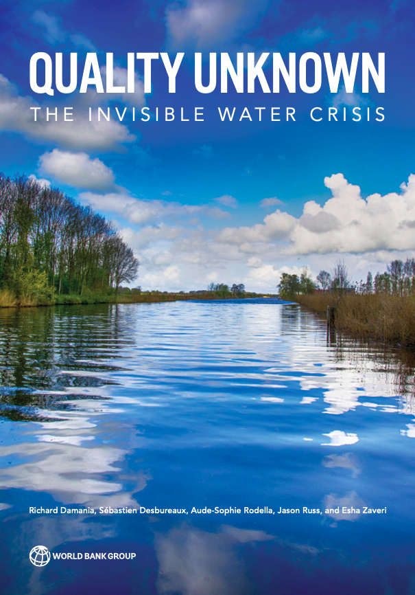 Quality Unknown : The Invisible Water Crisis