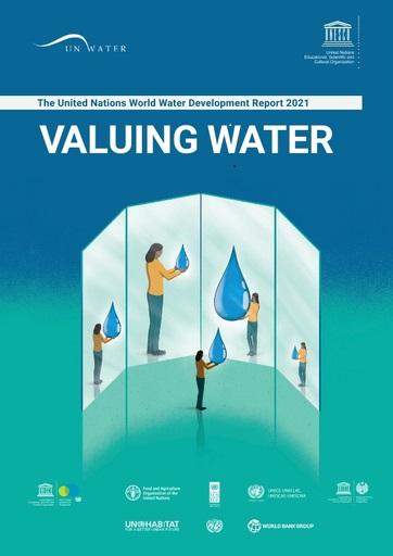 UN World Water Development Report 2021: Valuing Water